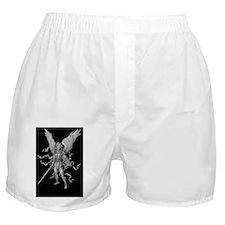 michael black bg 23x35 Boxer Shorts