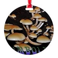 Humboldt Mushrooms Ornament