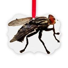 Fly Ornament