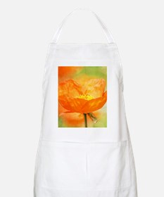 orange iceland poppy Apron