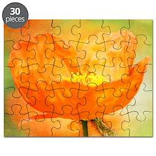 orange iceland poppy Puzzle