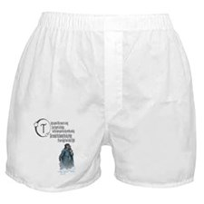 Lighter of the Stars Sympathy Boxer Shorts