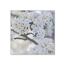 "white flowering tree Square Sticker 3"" x 3"""