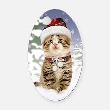 Snowy Kitten Oval Car Magnet