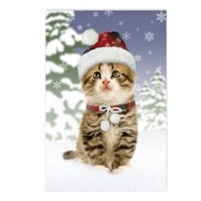 Snowy Kitten Postcards (Package of 8)