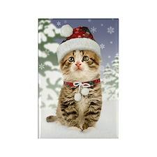 Snowy Kitten Rectangle Magnet
