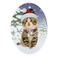 Snowy Kitten Oval Ornament