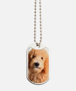 Golden doodle puppy Dog Tags