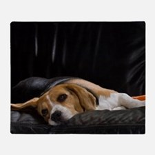 Lazy Beagle Throw Blanket