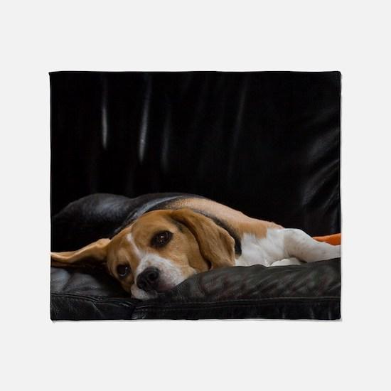 Lazy Beagle Throw Blanket