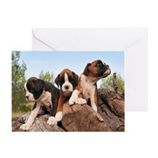 Puppies Boxer Greeting Card