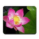 Waterlilly Mousepad