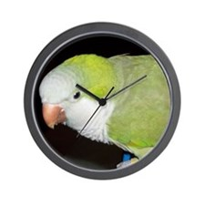 Quaker Parrot Wall Clock