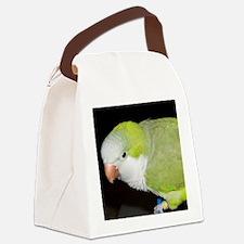 Quaker Parrot Canvas Lunch Bag