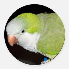 Quaker Parrot Round Car Magnet