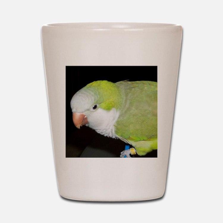 Quaker Parrot Shot Glass