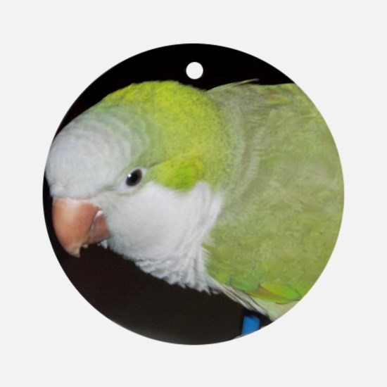 Quaker Parrot Round Ornament