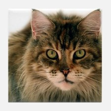 Maine Coon Tile Coaster