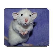 Retro Mousepad