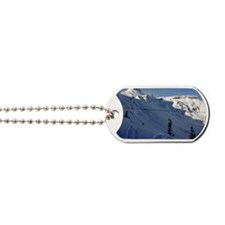 Northwest Sessions Dog Tags