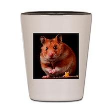 Hamster Shot Glass