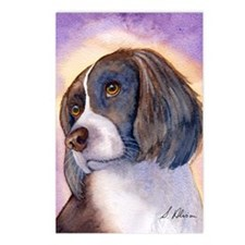 Springer spaniel waiting  Postcards (Package of 8)