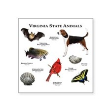 "Virginia State Animals Square Sticker 3"" x 3"""