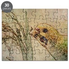 Parakeet 005 - With Grains Puzzle