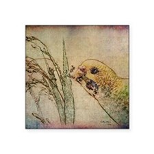 "Parakeet 005 - With Grains Square Sticker 3"" x 3"""