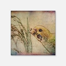 """Parakeet 005 - With Grains Square Sticker 3"""" x 3"""""""