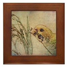 Parakeet 005 - With Grains Framed Tile