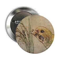 "Parakeet 005 - With Grains 2.25"" Button"