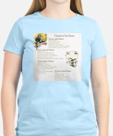 Mysteries of the Rosary Larg T-Shirt
