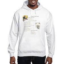 Mysteries of the Rosary Large Hoodie Sweatshirt