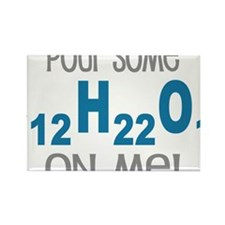 Pour Some Sugar Chemistry Geeky Rectangle Magnet