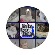 Support BCR Round Ornament
