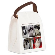 Lots of Kitties Canvas Lunch Bag