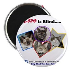 Love is blind Magnet
