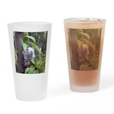 Dre Drinking Glass