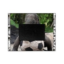 Elephant Soccer Picture Frame