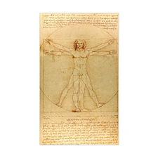Da Vincis Vitruvian Man Decal