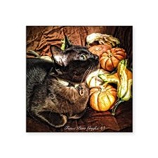 "Cat with Gourds Square Sticker 3"" x 3"""