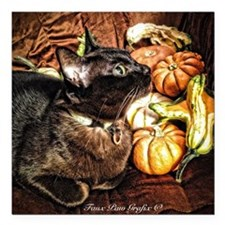"""Cat with Gourds Square Car Magnet 3"""" x 3"""""""