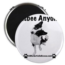 Frisbee Anyone? Magnet