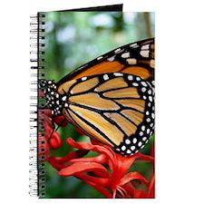Butterly In Garden Journal