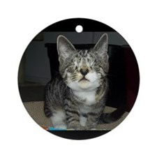 Pixie - Love is blind Round Ornament