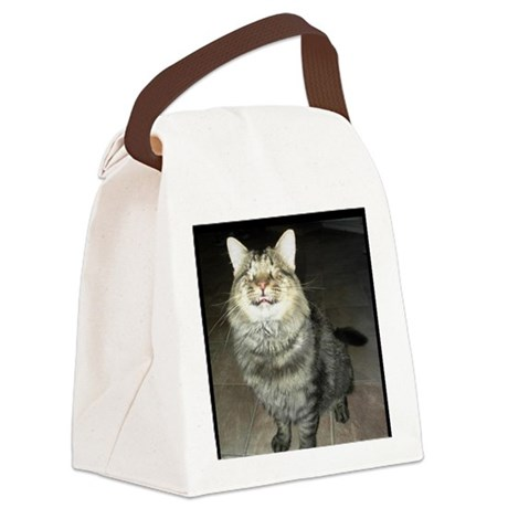 Snicker - Love Is Blind Canvas Lunch Bag