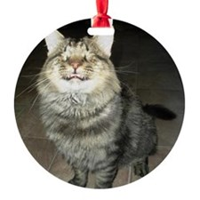Snicker - Love Is Blind Ornament