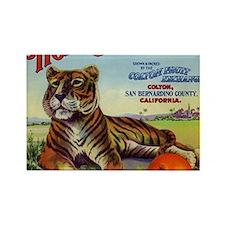Tiger Oranges Rectangle Magnet