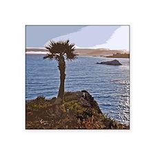 """Pismo Beach, California Sun Square Sticker 3"""" x 3"""""""